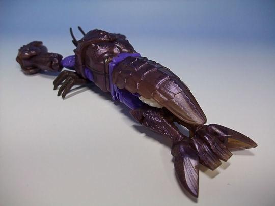 Seaclamp03
