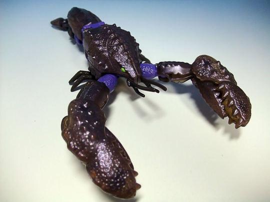 Seaclamp05