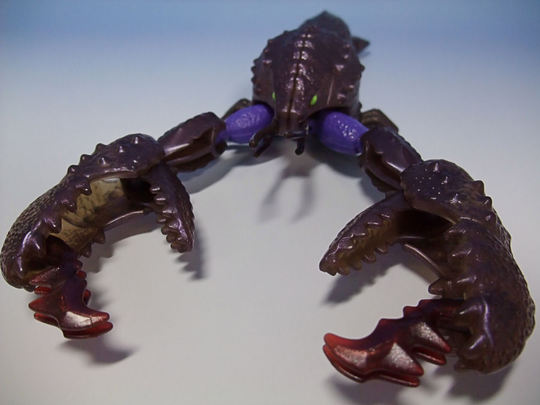 Seaclamp06